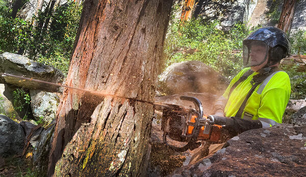 Austin Anderson Transhumeral Tree Faller CHainsaw Custom Activity-Specific Prosthesis