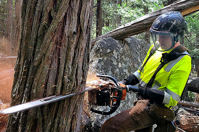 Austin Working with Chainsaw in Yosemite Park